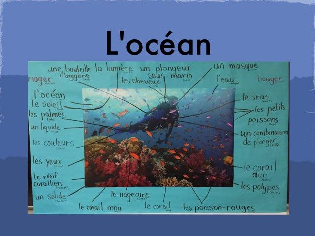 L'océan  by Laura Robin
