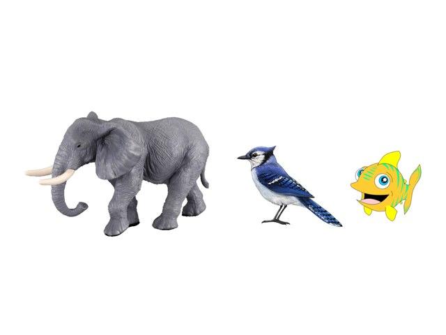 משחק החיות רמה 1 by אורלי גולדשטיין ליברמן