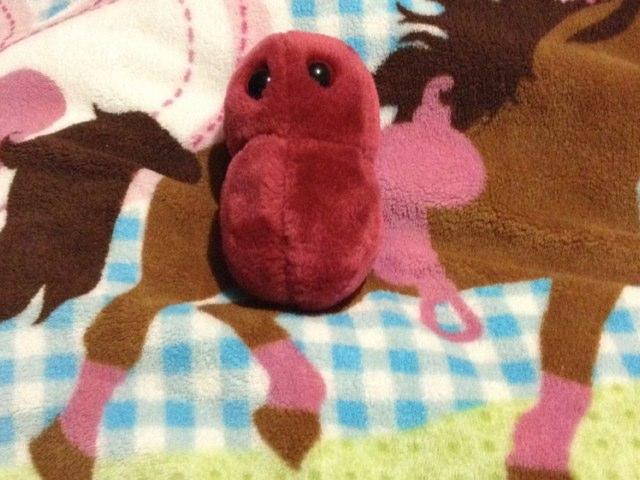 Microscópica Bonita by Fatima Guzman