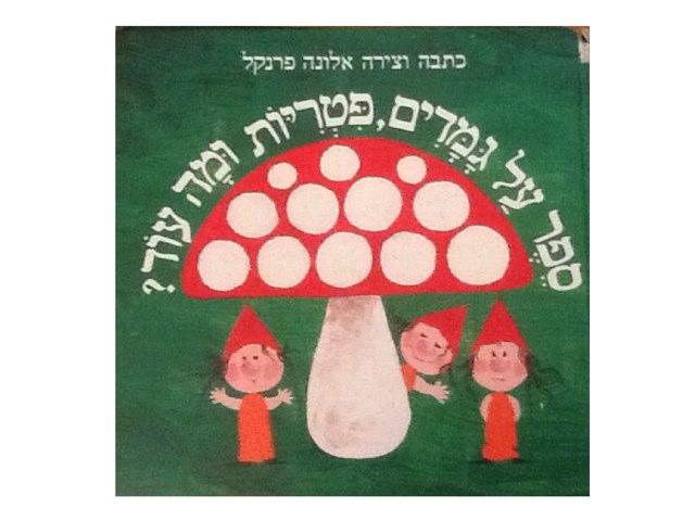 ספר על גמדים פטריות ומה  עוד by ענבל צימרמן