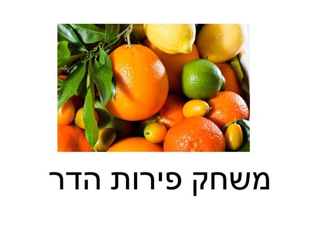 משחק על פירות הדר by אורית טדלה