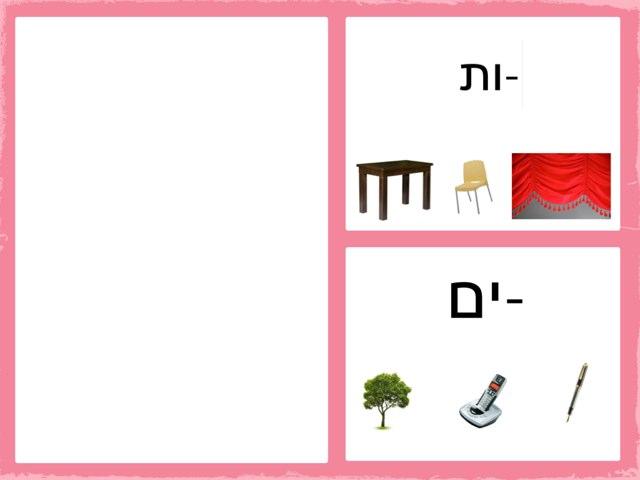 זכר בצורת רבים Xות by שמע ירושלים
