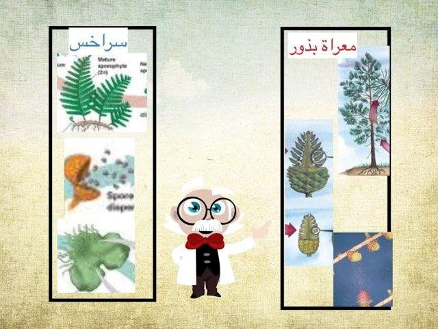 لعبة 255 by Ahmad ahmad