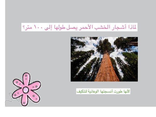 لعبة 2 by MoOmEe Al3ajmi