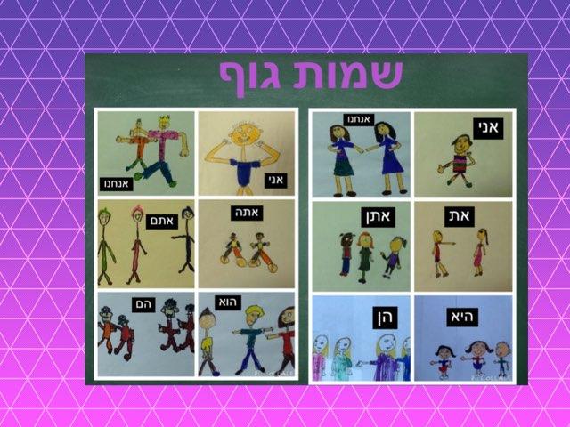משחק שמות גוף של ברכה by Liat Walker