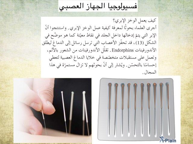 فسيولوجيا  الجهاز العصبي by Huda Hussain