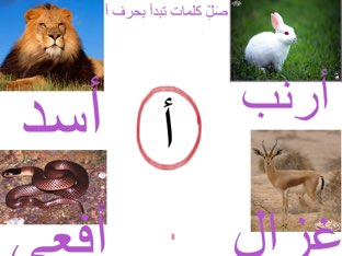 فعاليه حرف الألف by Hadool KJ