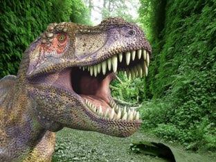 Quebra Cabeças Dos Dinossauros  by Edmar Neto