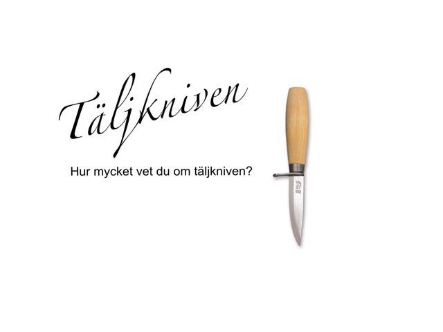 Täljknivens Grunder by Angela Djurfelter