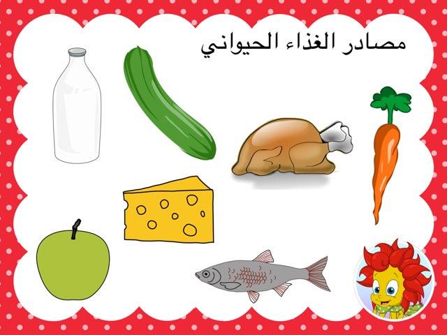 مصادر الغذاء by Anayed Alsaeed
