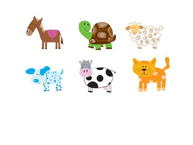 חיות וצלילים by Yohai Prior