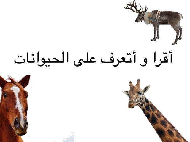 اقرأ و أتعرف على الحيوانات by Ève Java