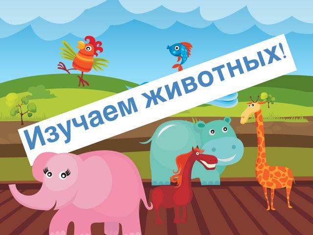 Изучаем Животных  by Дима дима
