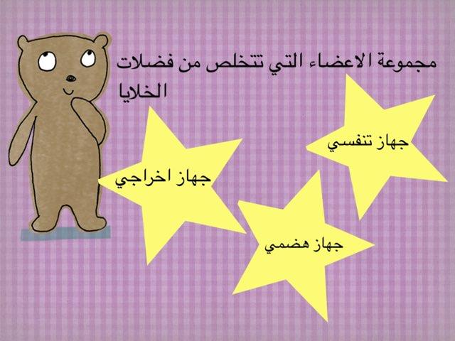 التخلص من فضلات الخلايا by Mai Al