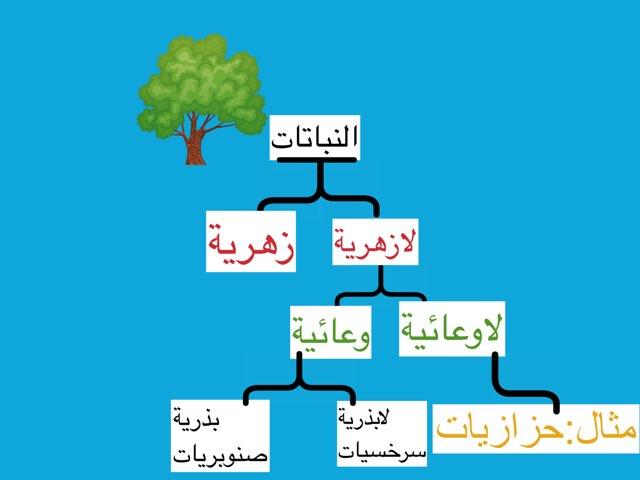 لعبة ٣ by Ahmad ahmad