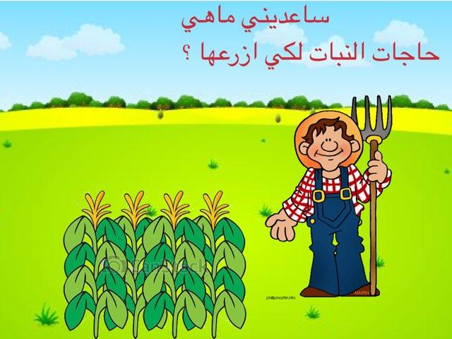 يانخلتي by Emee Al Khashti