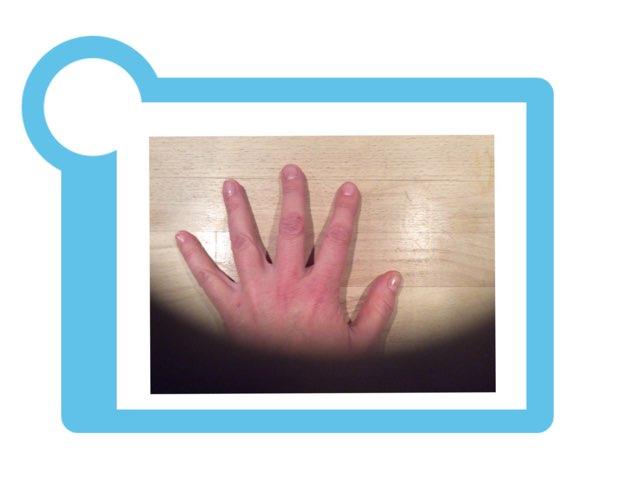 Hånden / The Hand by Lotte Kaae