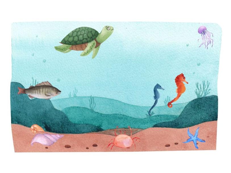 Under the Sea by Lauren Hamilton Saez
