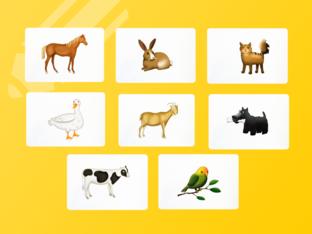 Unit 5 Betty (animals) - question by Play & Learn English School