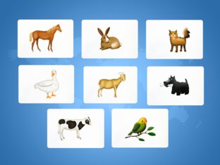Unit 5 Betty (animals) - type by Play & Learn English School
