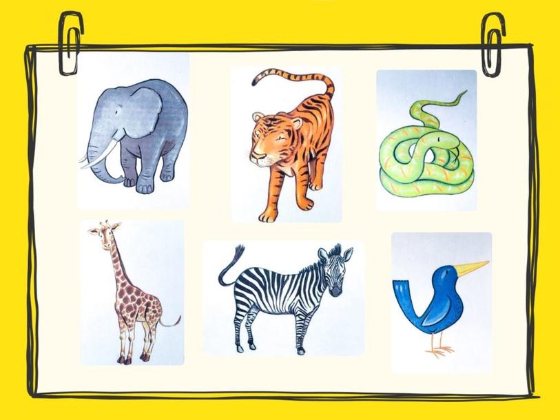 Unit 5 - Mr. Charlie (animals) by Play & Learn English School