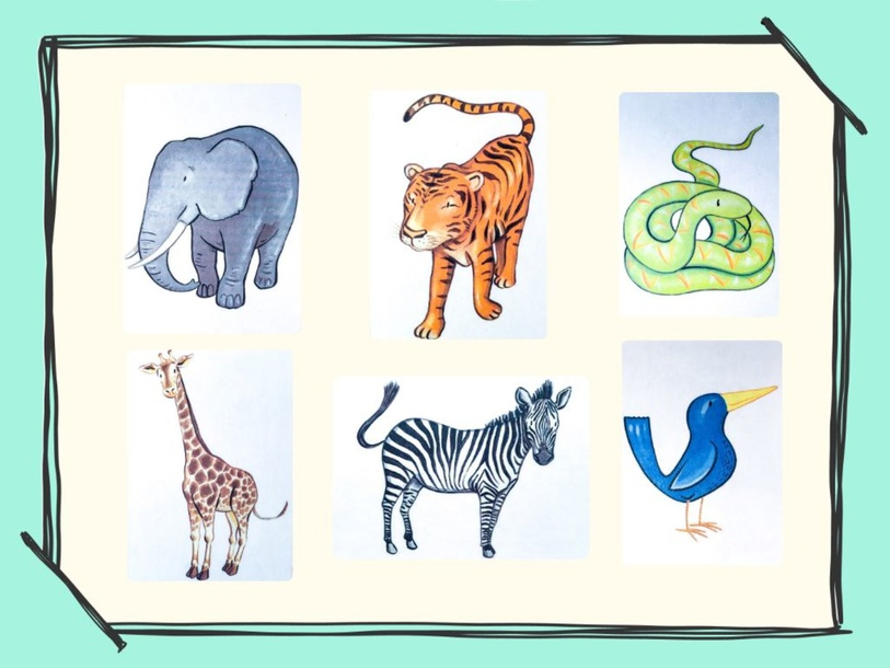 Unit 5 - Mr. Charlie (animals) - practice by Play & Learn English School