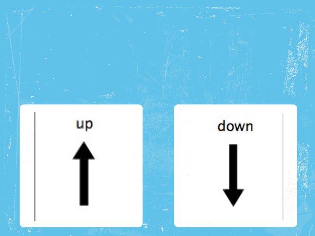 Up / Down by Jenny Orange