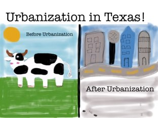 Urbanization In Texas by Nishta Patel
