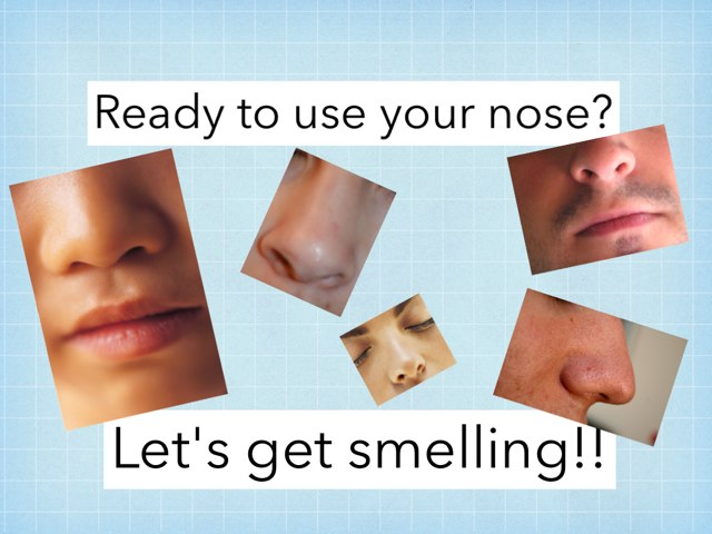 Use Your Nose!  by Julie Gittoes-Henry