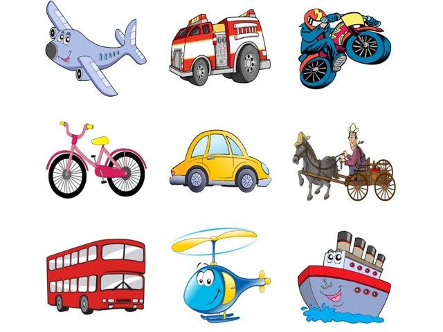 Vehicles by Neta Perri