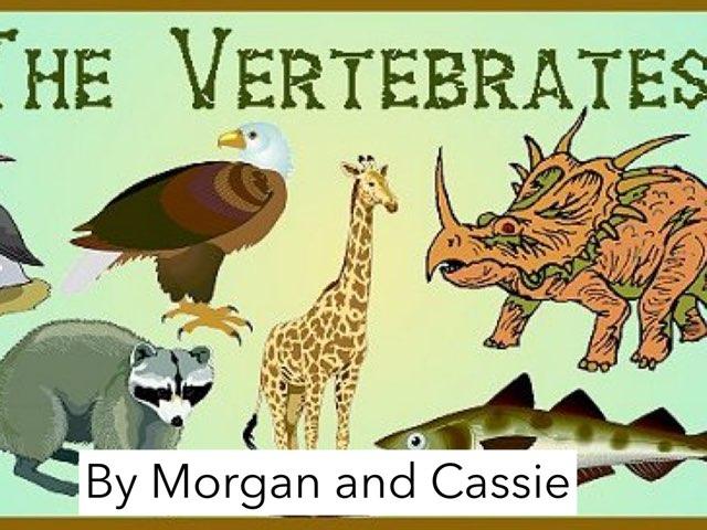 Vertebrates By Morgan And Cassie by Jennifer Alexander