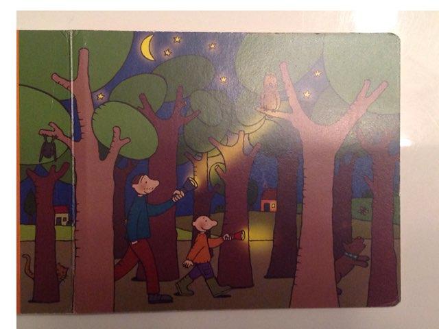 Vertelplaat Het Nachtlampje Van Jules  by Kelly Van Aerschot