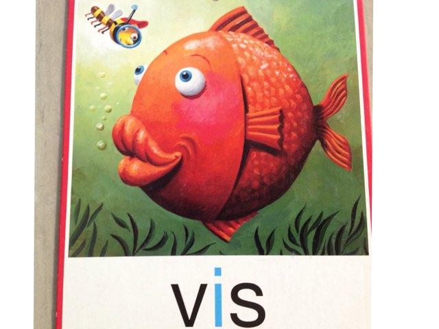 Vis Vll by Ellen heerink