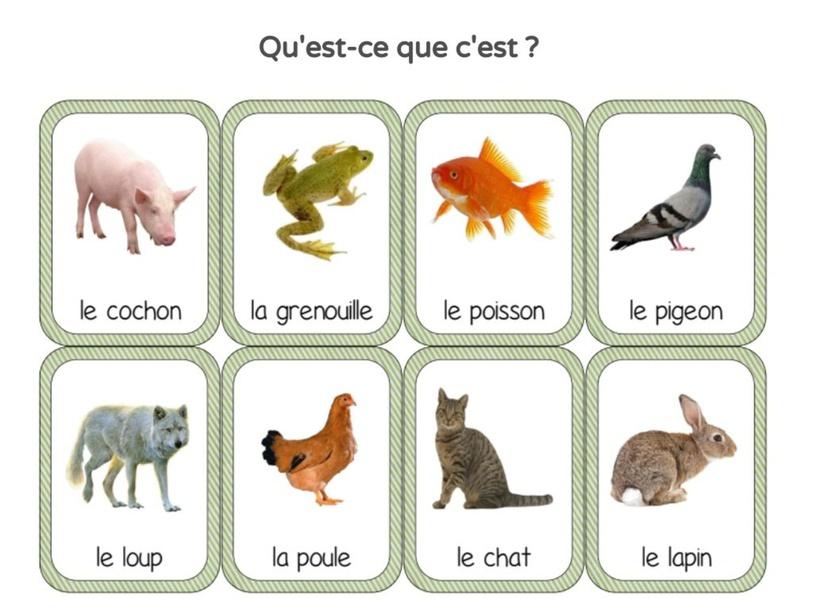Vocabulaire et Phonologie 3 by UPE2A Prades