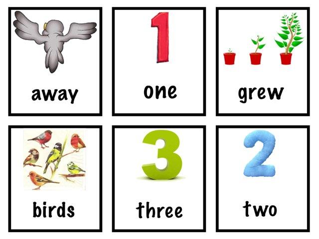 Vocabulary Three Baby Birds RAZ Level B by Cindy Derienzo