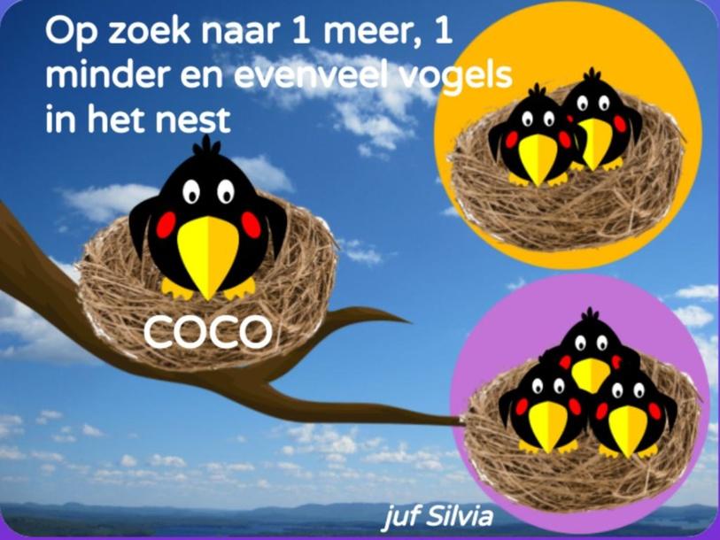 Vogels tellen met Coco # groep 1/2 by Silvia Broekmans