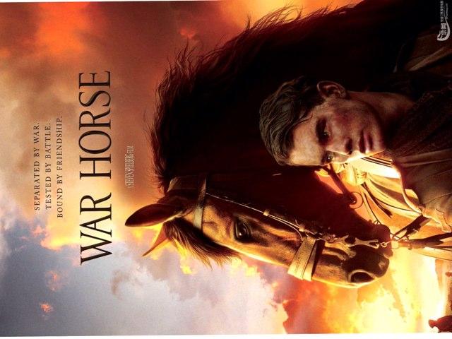 War Horse by MRS MCINTOSH