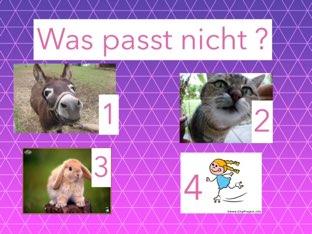Was Passt Nicht? by Pinkiii R.