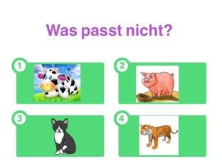 Was passt nicht?  by Nadja Blust