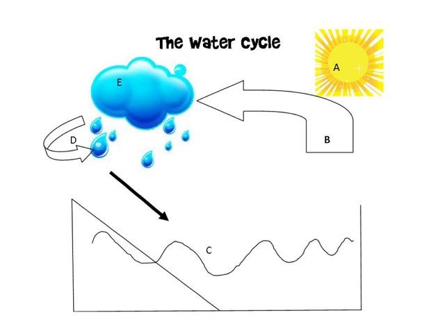 Water Cycle by Ashley Sonkin