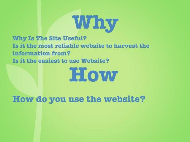 Website Evaluation by Dibbles Dobbles