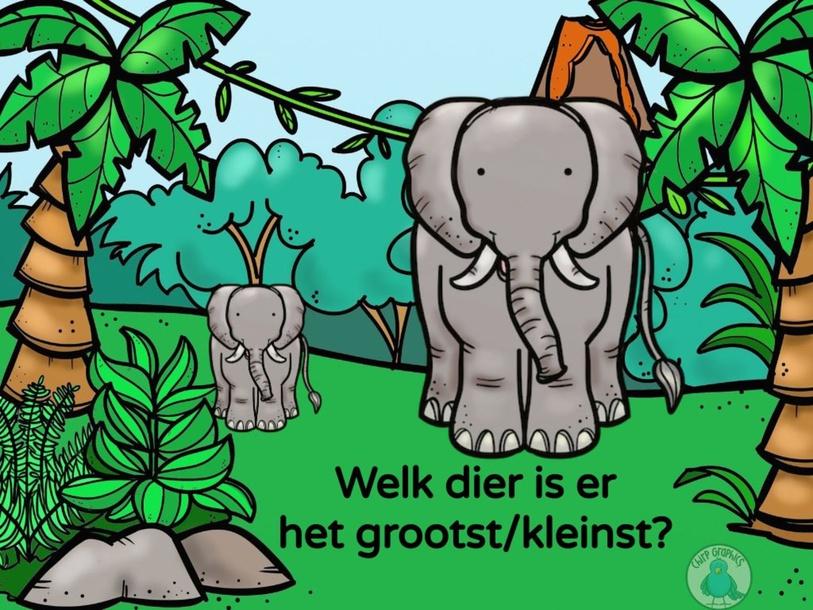 Welk dier is er het grootst/kleinst? by Frouke Taillieu
