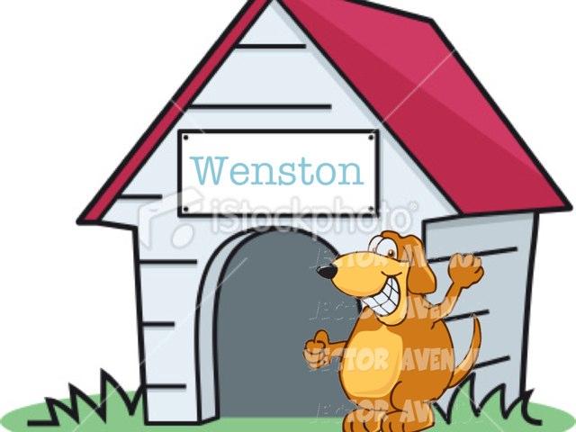Wenston by Makenzie Mathews