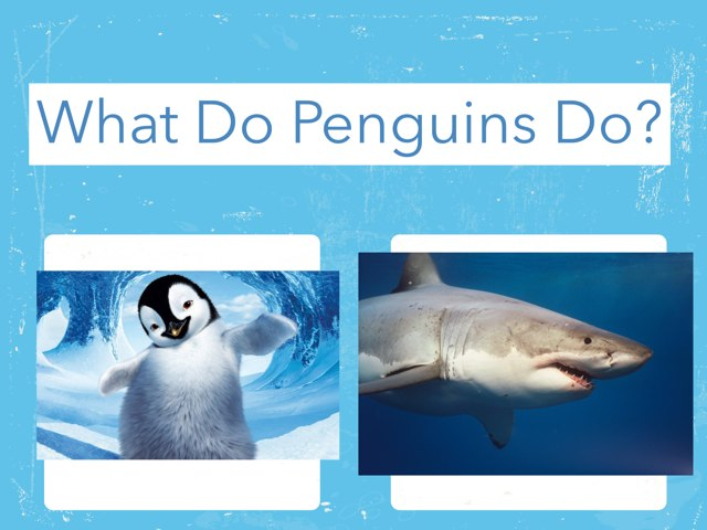 What Do Penguins Do? by Kristin Meadows