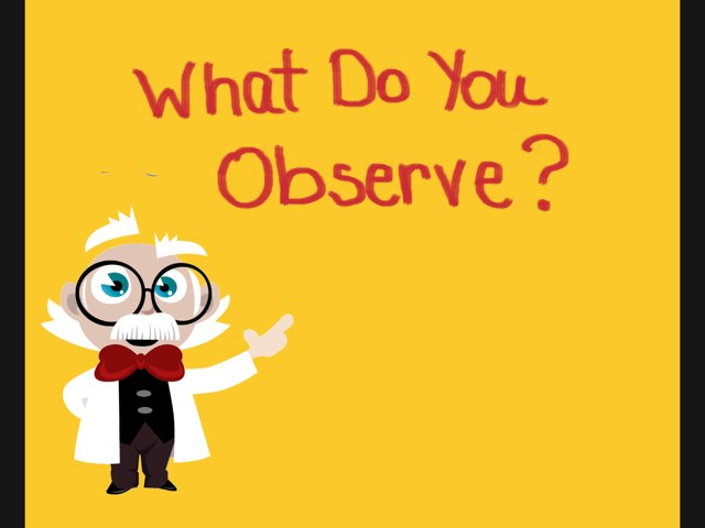 What Do You Observe? Playing With Senses by Vicki Clarke