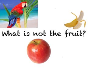 What Is Not The Fruit? by Belinda Job