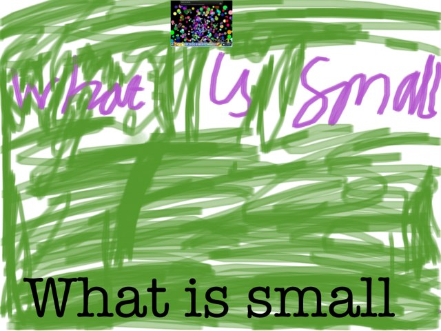 What Is Small And Big? by jameelah Oyawoye