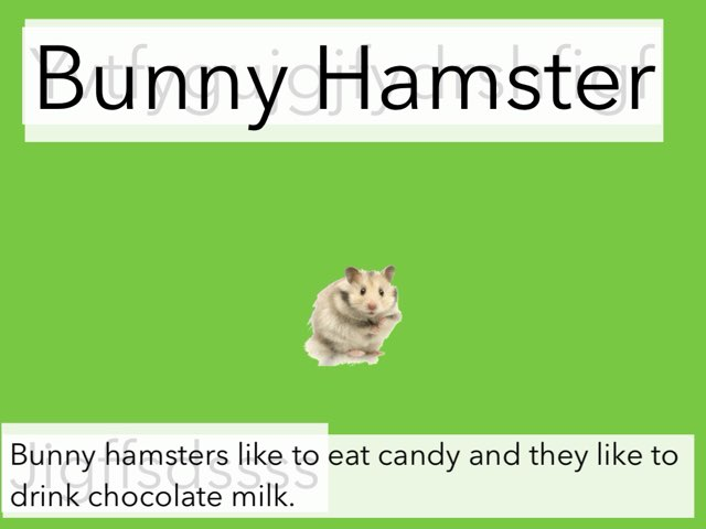What Kind Of Hamster Are You? by M3 taylor