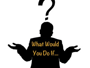 What Would You Do If? by Bonnie Bear