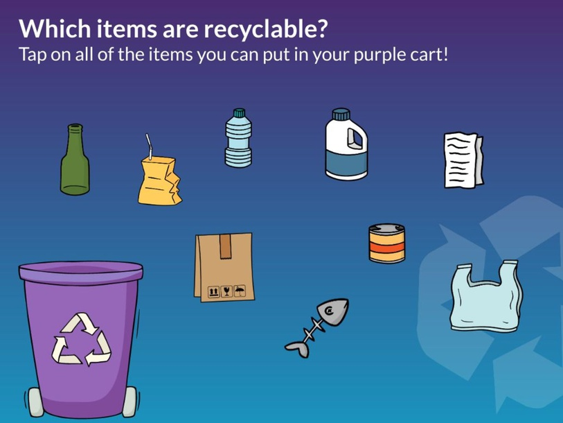 What Can I Recycle? by Julie Stein